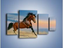 Obraz na płótnie – Brązowy koń na pustyni – czteroczęściowy Z011W4