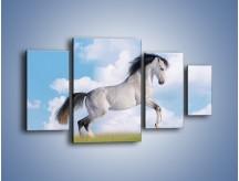 Obraz na płótnie – Białe obłoki i koń – czteroczęściowy Z019W4