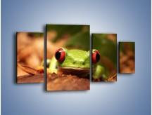 Obraz na płótnie – Bystre oczka małej żabki – czteroczęściowy Z023W4