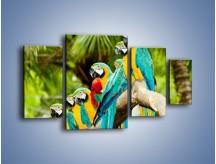 Obraz na płótnie – Kolorowe papugi w szeregu – czteroczęściowy Z029W4