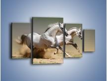 Obraz na płótnie – Białe konie w pustynnym galopie – czteroczęściowy Z055W4