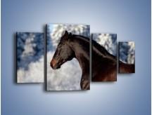 Obraz na płótnie – Brązowy ogier na zimowym spacerze – czteroczęściowy Z056W4