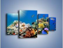 Obraz na płótnie – Fauna i kolorowi towarzysze – czteroczęściowy Z116W4