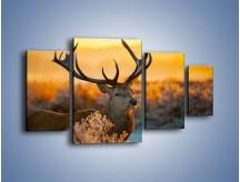 Obraz na płótnie – Ciężkie poroże jelenia – czteroczęściowy Z165W4