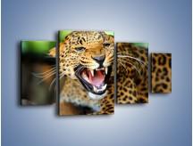 Obraz na płótnie – Jaguar z pazurem – czteroczęściowy Z184W4
