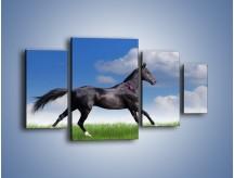 Obraz na płótnie – Dziki koń w biegu – czteroczęściowy Z194W4