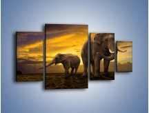 Obraz na płótnie – Ciekawość małego słonika – czteroczęściowy Z212W4