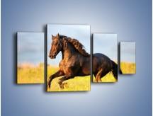 Obraz na płótnie – Dziki koń i jego mięśnie – czteroczęściowy Z232W4