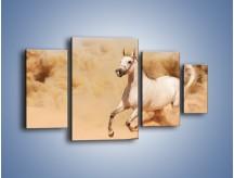 Obraz na płótnie – Klacz w tumanach piasku – czteroczęściowy Z233W4