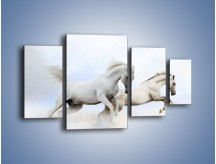 Obraz na płótnie – Białe konie i biały śnieg – czteroczęściowy Z239W4