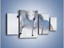 Obraz na płótnie – Gonitwa konna w bieli – czteroczęściowy Z240W4
