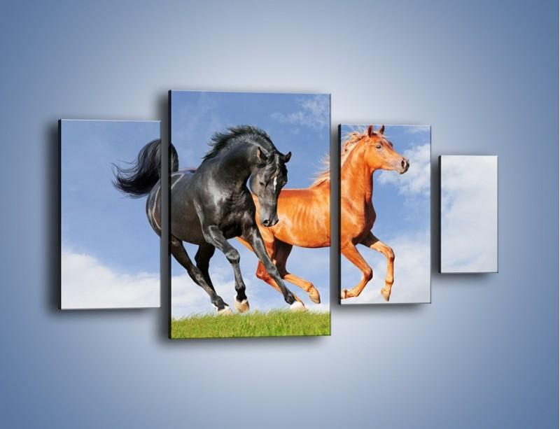 Obraz na płótnie – Czarny rudy i koń – czteroczęściowy Z241W4