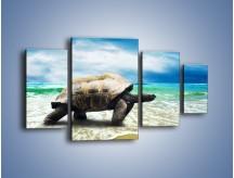 Obraz na płótnie – Jak tu nie kochać żółwi – czteroczęściowy Z251W4
