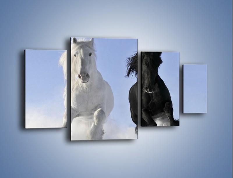 Obraz na płótnie – Czarno-biały wyścig konny – czteroczęściowy Z263W4