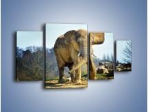 Obraz na płótnie – Ciężkie życie słonia – czteroczęściowy Z273W4