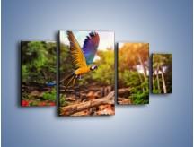 Obraz na płótnie – Kolorowa papuga w locie – czteroczęściowy Z280W4