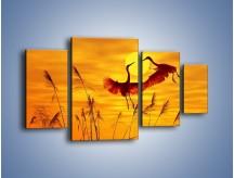 Obraz na płótnie – Czaple i zachód słońca – czteroczęściowy Z302W4