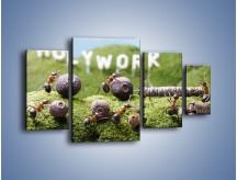 Obraz na płótnie – Ciężka praca mrówek – czteroczęściowy Z308W4