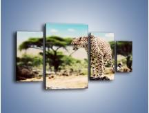 Obraz na płótnie – Cała zwinność geparda – czteroczęściowy Z315W4