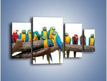 Obraz na płótnie – Kolorowe stado papug – czteroczęściowy Z326W4