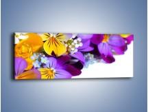 Obraz na płótnie – Ciepłe kolory w kwiatach – jednoczęściowy panoramiczny K442
