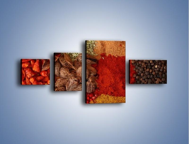 Obraz na płótnie – Afrykańskie przyprawy – czteroczęściowy JN109W5