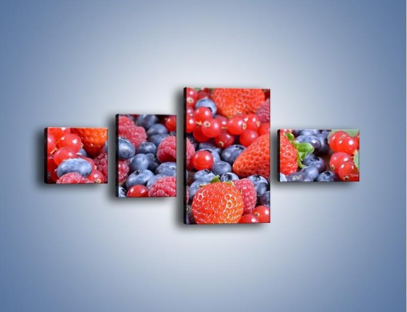 Obraz na płótnie – Owoce z działki – czteroczęściowy JN422W5