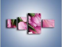 Obraz na płótnie – Atłas wśród tulipanów – czteroczęściowy K152W5