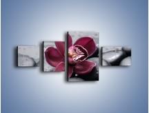 Obraz na płótnie – Bordowy storczyk i ciemne towarzystwo – czteroczęściowy K156W5