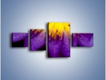 Obraz na płótnie – Baśniowy kwiat z tajemnicą – czteroczęściowy K189W5