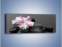 Obraz na płótnie – Czarna tafla z kwiatem – jednoczęściowy panoramiczny K520