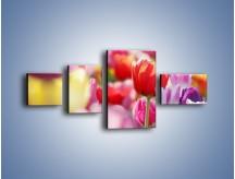 Obraz na płótnie – Boso przez tulipany – czteroczęściowy K344W5
