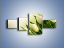Obraz na płótnie – Białe tulipany na zgodę – czteroczęściowy K400W5