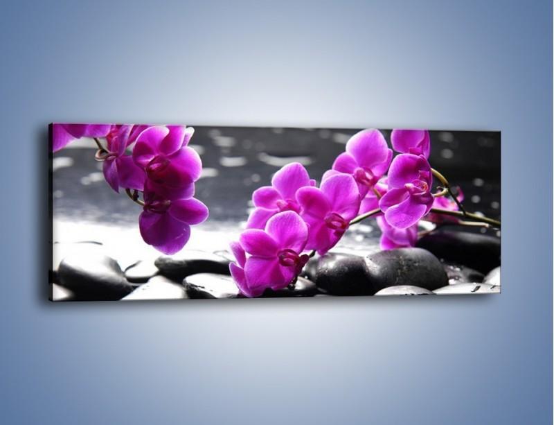 Obraz na płótnie – Dotyk kamienia i storczyka – jednoczęściowy panoramiczny K526