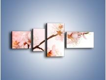 Obraz na płótnie – Blask kwiatów jabłoni – czteroczęściowy K569W5