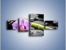 Obraz na płótnie – Bambus czy storczyk – czteroczęściowy K686W5