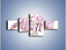 Obraz na płótnie – Cieniutkie gałązki storczyków – czteroczęściowy K813W5