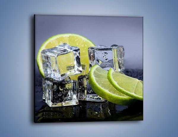 Obraz na płótnie – Plastry limonki o zmroku – jednoczęściowy kwadratowy JN496