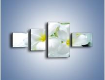 Obraz na płótnie – Białe kwiaty w potoku – czteroczęściowy K991W5