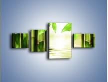 Obraz na płótnie – Bambusowe liście i łodygi – czteroczęściowy KN027W5