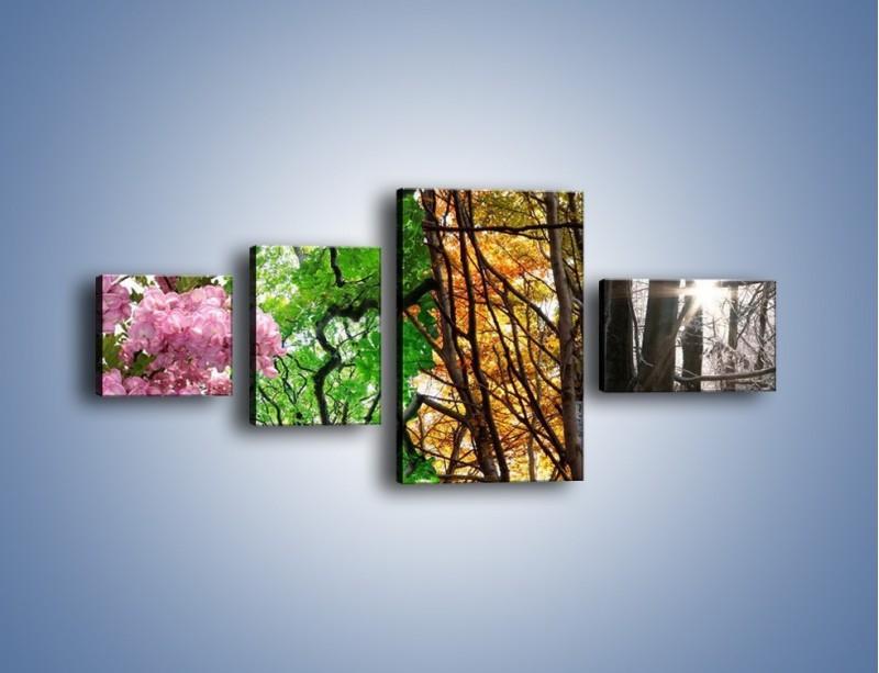 Obraz na płótnie – Drzewa w różnych kolorach – czteroczęściowy KN037W5