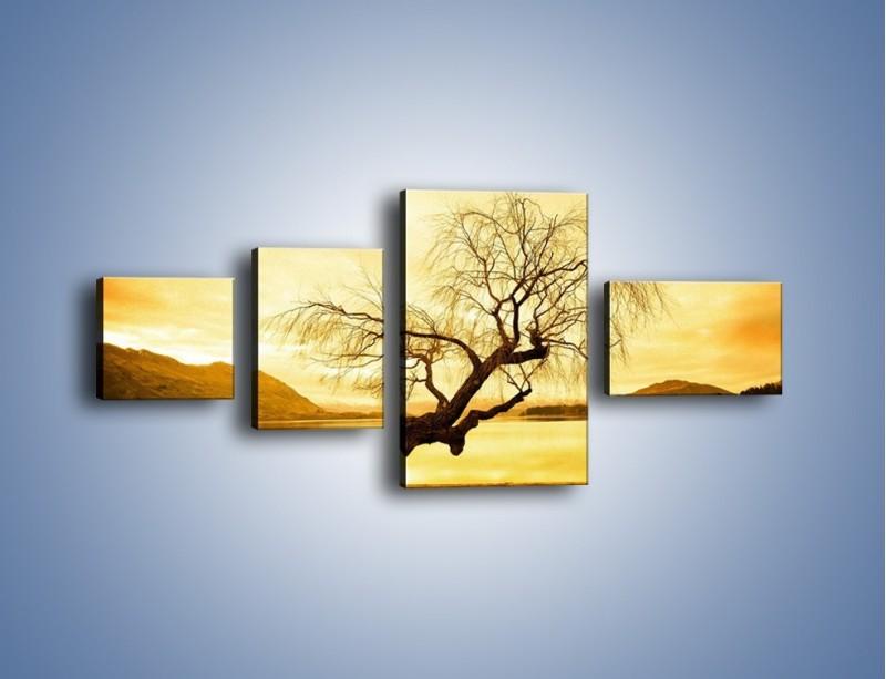 Obraz na płótnie – Pochylone drzewo w sepii – czteroczęściowy KN1033W5