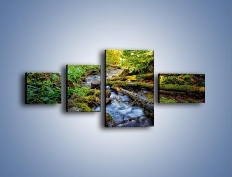 Obraz na płótnie – Drewno ścięte do wody – czteroczęściowy KN1059W5