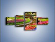 Obraz na płótnie – Aleje kolorowych tulipanów – czteroczęściowy KN1079W5