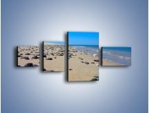 Obraz na płótnie – Całe morze kamyczków – czteroczęściowy KN1086AW5