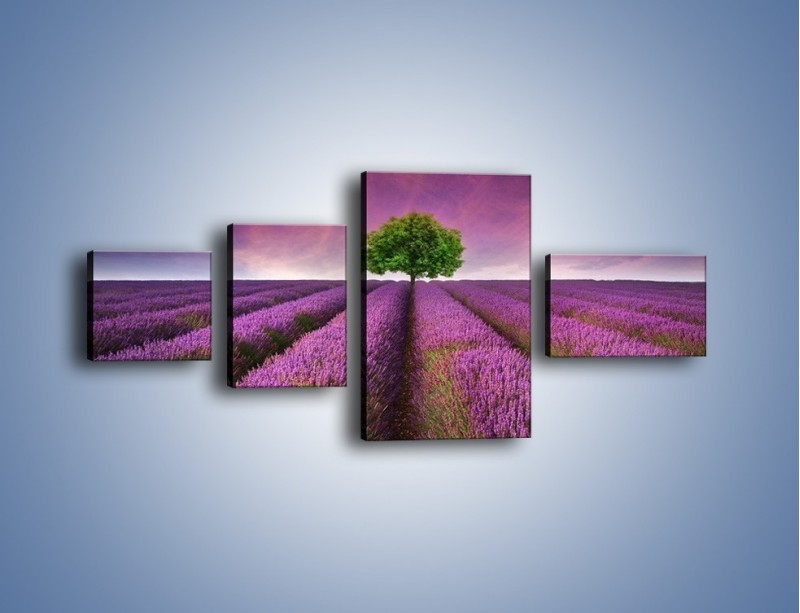 Obraz na płótnie – Droga lawendową do drzewa – czteroczęściowy KN1158AW5