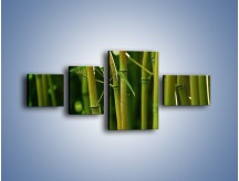 Obraz na płótnie – Bambusowe łodygi z bliska – czteroczęściowy KN118W5