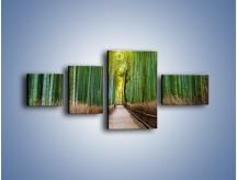 Obraz na płótnie – Bambusowy las – czteroczęściowy KN1187AW5