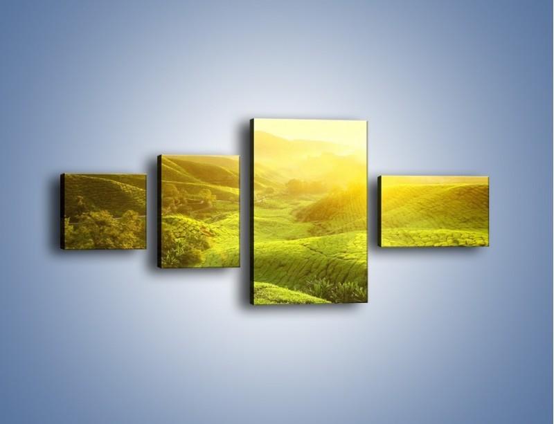 Obraz na płótnie – Zieleń w dolinie – czteroczęściowy KN1204AW5