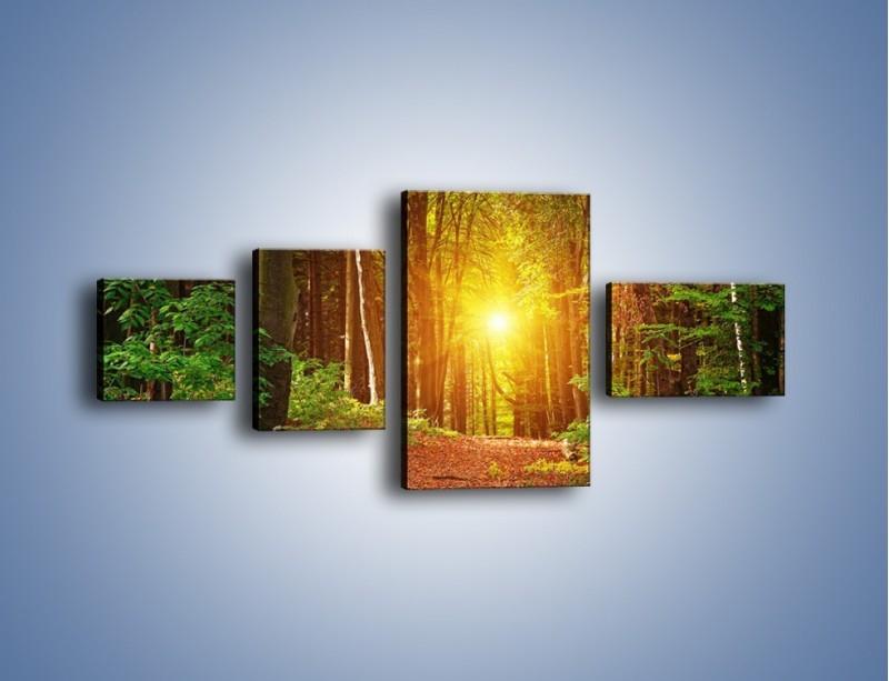 Obraz na płótnie – Polski krajobraz leśny – czteroczęściowy KN1257AW5